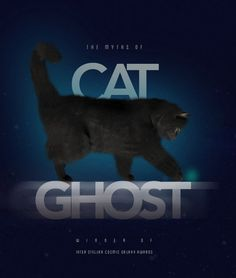 #poster #cat #editorial #design #concept #blue