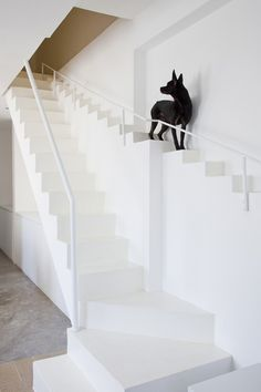 House Renovation in Vietnam by 07Beach #staircase #dog