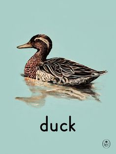duck Art Print by Ladybird Books Easyart.com #print #design #retro #artprints #vintage #art #bookcover