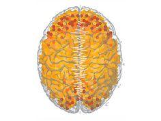 Brain full of honeycomb #honeycomb #graphic #brain #pattern