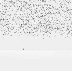 Surreal Photography by Hossein Zare #inspiration #surreal #photography