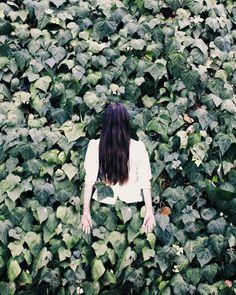Enter the Garden | Sallie Harrison
