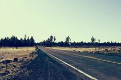 American Road Trip #sky #woods #road #long #trip #america #open #green