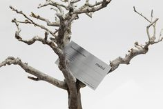 #identity #branding #natural #businesscard