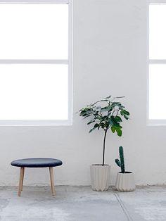 Plants. Via bloomingville.com. #plant #flowerpot