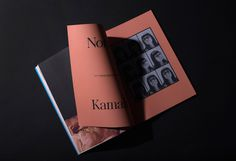 Romance Journal Dedicated To Female Emotions | Trendland