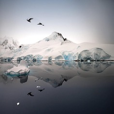 Outstanding Wildlife and Landscape Photography by Pepe Soho