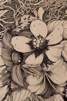 illustration, floral, stippling, pen
