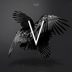 VIOLENCE GRAPHIQUE #vulture #black #bird #letter #square #central #music