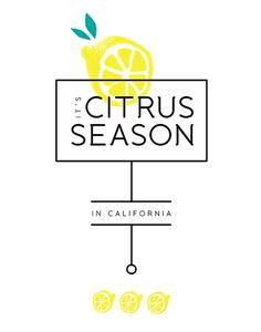 citrus season | GRAPHIC DESIGN #type #identity #layout #california