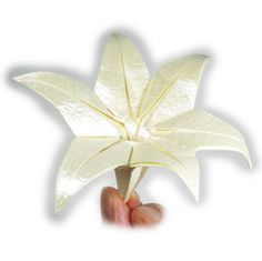 How to make an origami lily with six petals (http://www.origami-flower.org/howto-origami-lily.php)