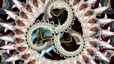 Claws Feathers and Fangs #design #spiral #claws #veronica #feathers #sharks #butterfly #fangs #velasquez #patterns