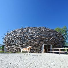 Dezeen » Blog Archive » Stork Nest Farm by SGL Projekt #architecture #nest