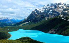 Peyto Lake - Alberta, Canada #lake #peyto #canada #alberta