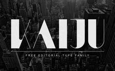 Kaiju : Free Editorial Font