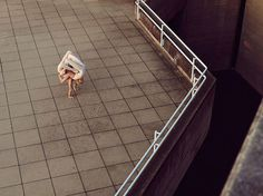 Intersection by Bertil Nilsson | iGNANT.de #form #architecture #figure #body