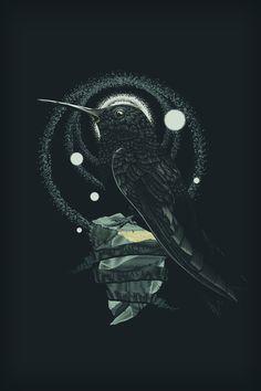 Stone Steel on Behance #illustration #vector #tone #bird