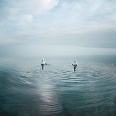 Akos Major | Graphik'n'Sound #photography