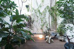 Courtyard container garden. Río Nilo Apt. © LGM Studio. #courtyard #containergarden #garden