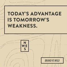 Must-read for CEOs | For Brand vs Wild, a survival guide for business by Jonathan David Lewis, VP of McKee Wallwork + Co. | Designed by Brittany Byrne | WILDERNESS SURVIVAL