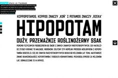 GraphicHug™ – Everybody Needs a Hug » Polish Hipopotamus #design #web #typography