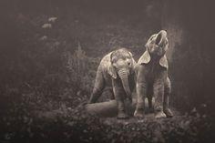 africa-souls-zoo-photography-manuela-kulpa-11