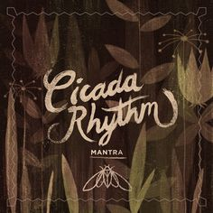 Cicada_main #packaging