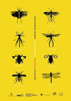 Nano Torres | Diseño Gráfico #torres #nano #poster #granada