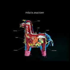 Piñata Anatomy - Carmichael Collective #candy #product #object #anatomy