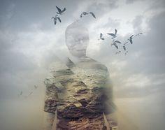 Avatar #man #fog #seagulls