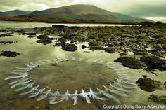 Land art by Gerry Barry #land #landscape #photography #art #eco #tone #beach
