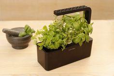 Smart Herb Garden #tech #flow #gadget #gift #ideas #cool