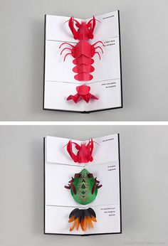 Animal Carnival #pop-up book #animals #paper cut