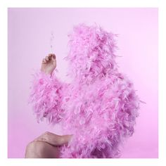 GERWYN DAVIES / BEAST #photograph #photography #smoke #pink #feather #beast #gerwyn davies