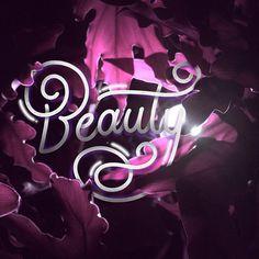 Hidden Beauty ✨🌸