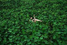 Photography by Prue Stent #inspiration #photography #art