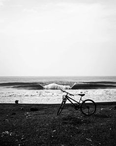 Photo Blog | SURFER Magazine