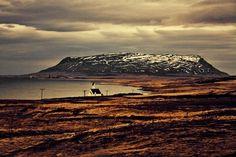 Kalle Gustafsson #kalle #gustafsson #photography
