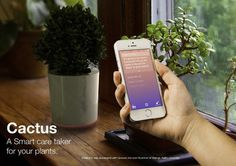 Cactus #user #plants #ux #devices #of #design #ui #smart #experience #internet #industrial #things #cactus #plant
