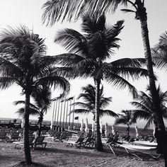 Likes | Tumblr #palms
