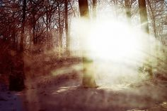 Martin Johansson #photography #martin #johansson