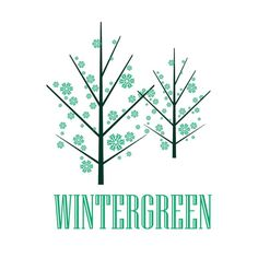 Behance :: Editing Logos #green #tree #design #graphic #snow #illustration #logo #winter