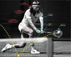 sports_borg.gif (image) #diagram #layout