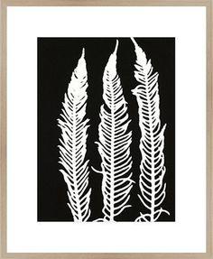 Framed Print 'Black Fern ' 80cm x 60cm