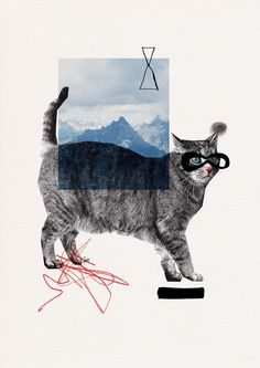 Katze #fischer #cat #illustration #maria #collage