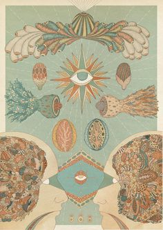 Vision anatomy illustration by Katie Scott #illustration
