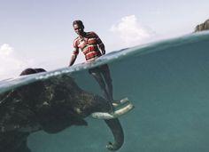 futuremilk #island #elephant