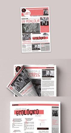 """""""El Chat"""" Newsletter"""