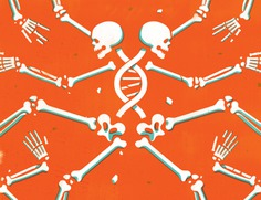 NYTimes Book Review | Ancient bone dna reveals new lineage insights #illustration *Society of Illustrators 61