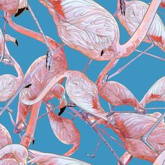 Flamingo #flamingo #pattern #tropical